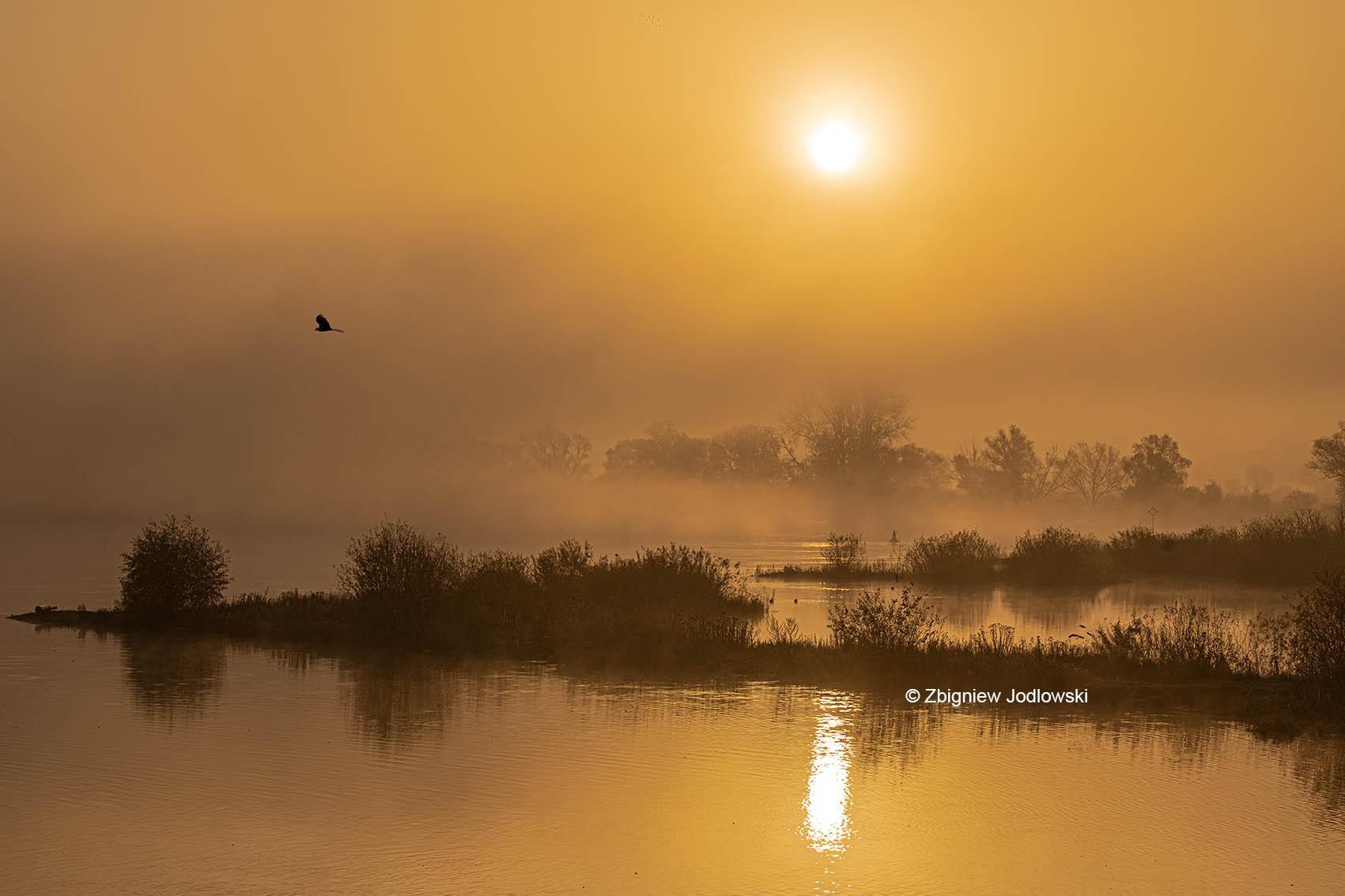Sonnenaufgang_Damnatz2-72